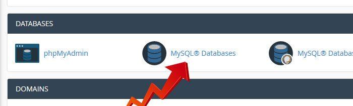 MySQL Databases