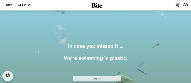 bite website design